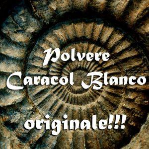POLVERE CARACOL BLANCO - KIT RITUALE DOMINIO