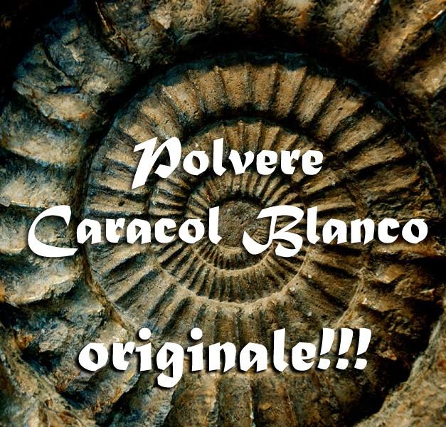 POLVERE CARACOL BLANCO – KIT RITUALE DOMINIO
