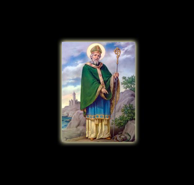SAN PATRIZIO – DAMBALLAH – STAMPA SUBLIMATICA SU ALLUMINIO CM 20 X 15