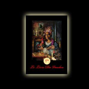 IL LIBRO DEL VOODOO - LE LIVRE DU VAUDOU PAGINE 296 - FORMATO ECONOMICO - RILEGATURA IN BROSSURA